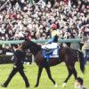 ディープインパクト「後継新種牡馬」レース(1)種付けの損失額は40億円