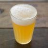 ビール輸出「99%減」に噴出する韓国からの完全撤退論!